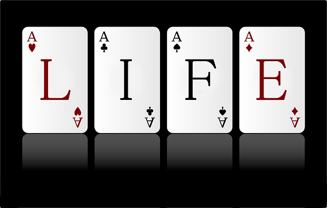 life - ask your questions now!